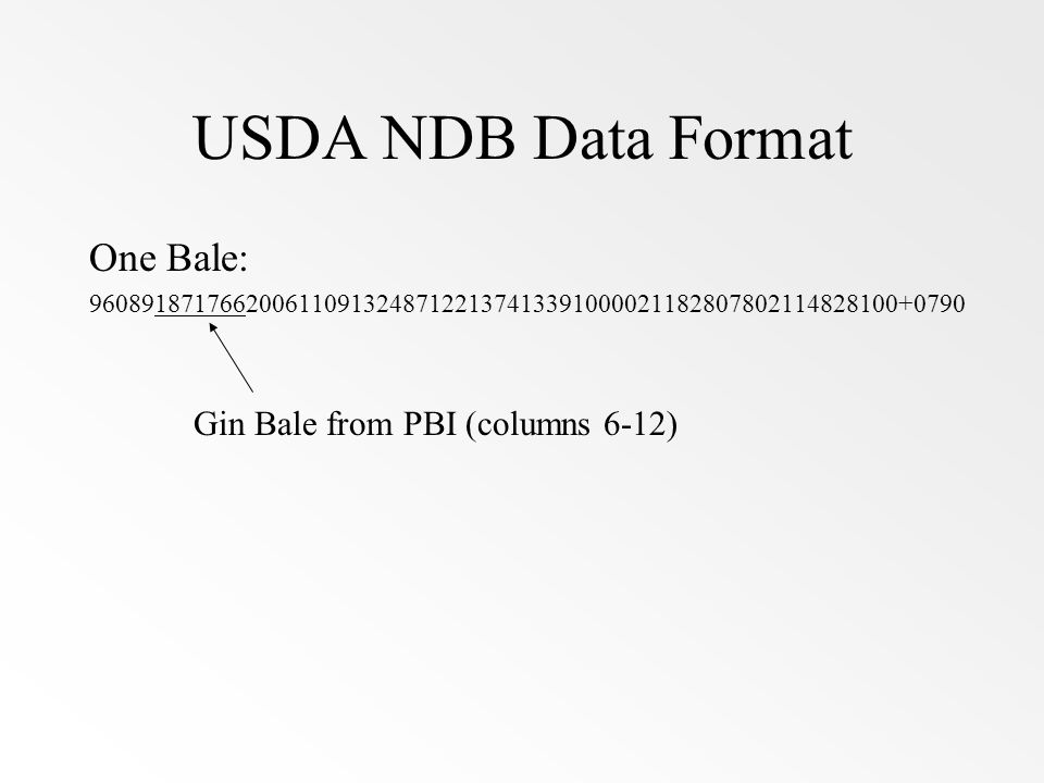 USDA NDB Data Format One Bale: