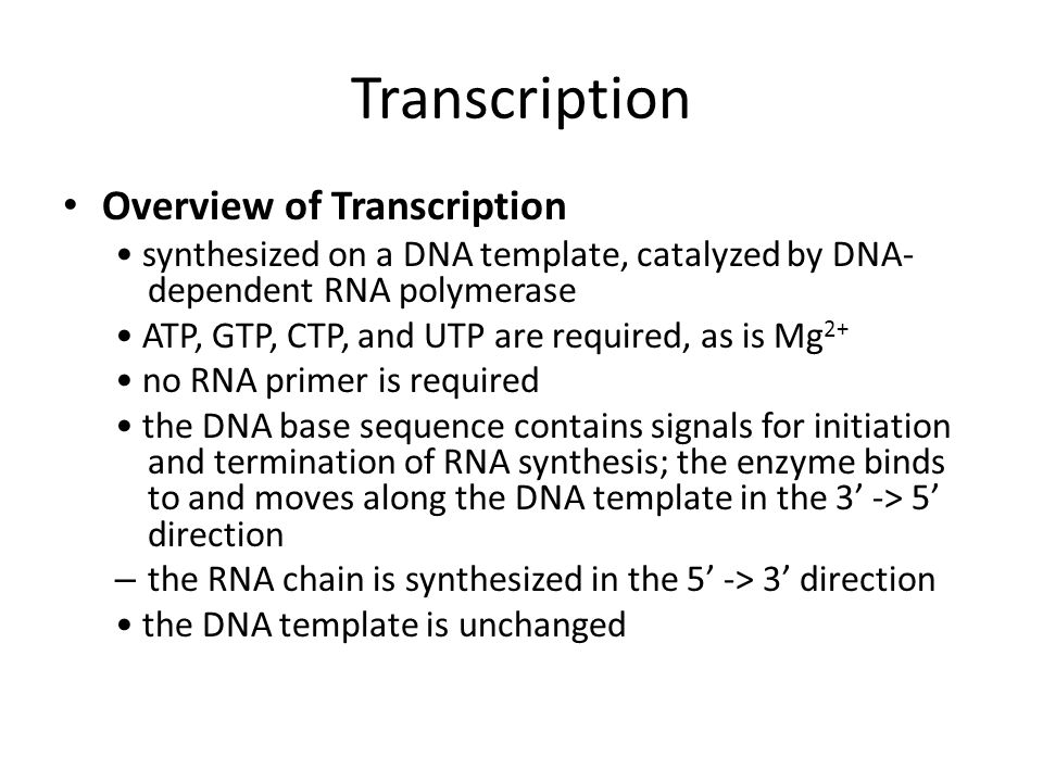 Transcription Overview of Transcription