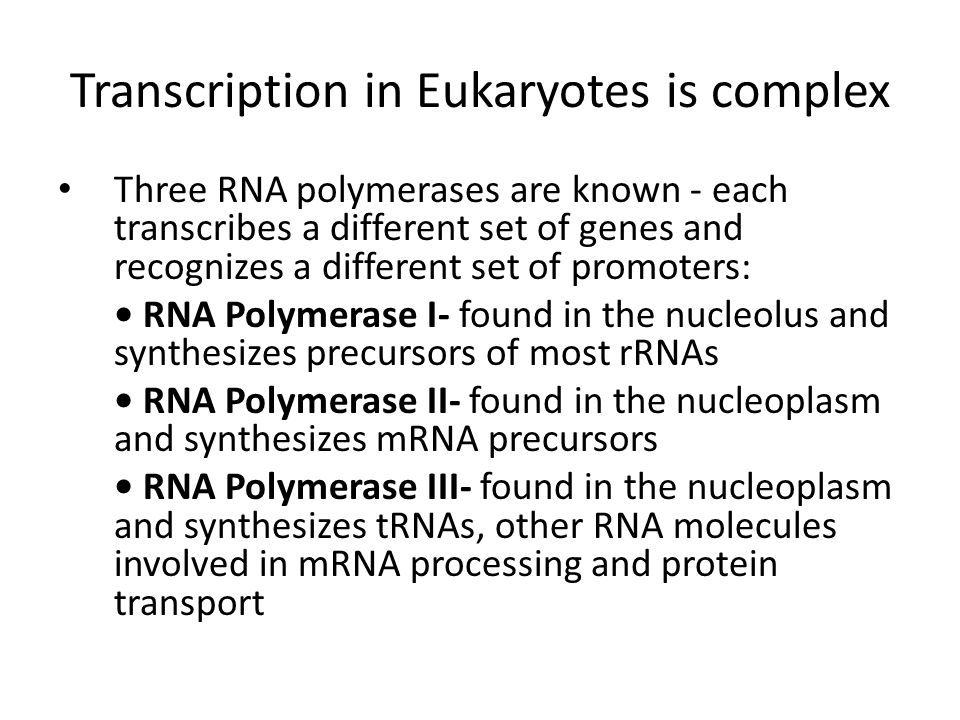 Transcription in Eukaryotes is complex