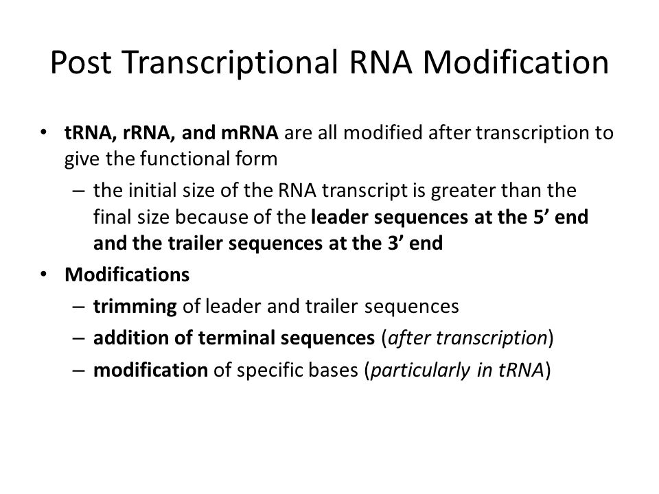 Post Transcriptional RNA Modification