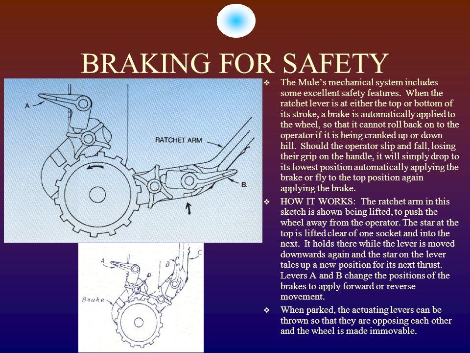 BRAKING FOR SAFETY