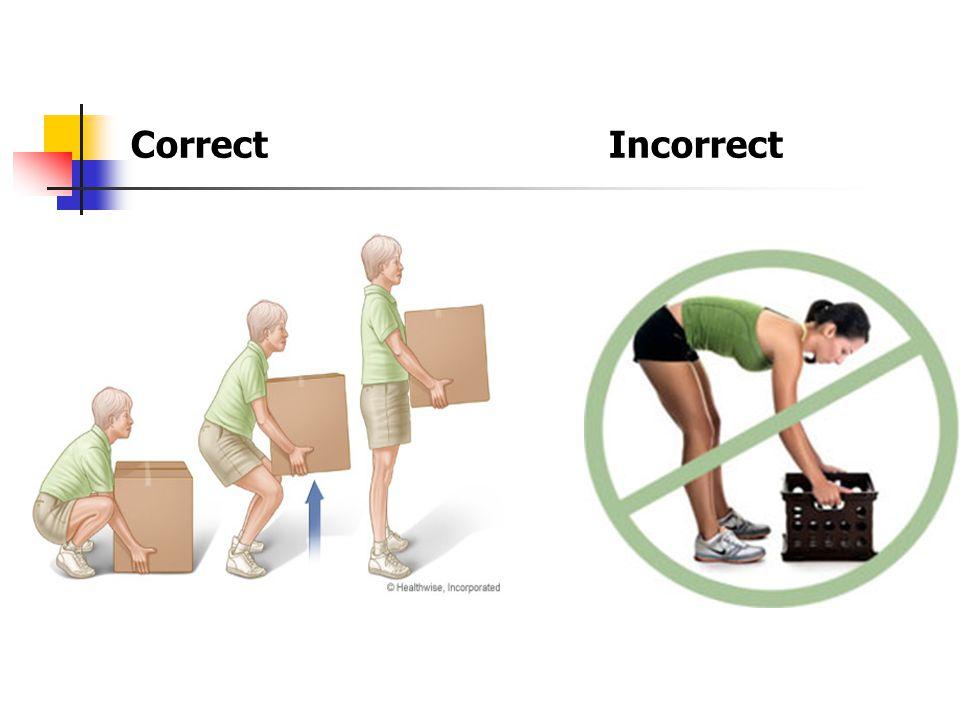 Correct Incorrect