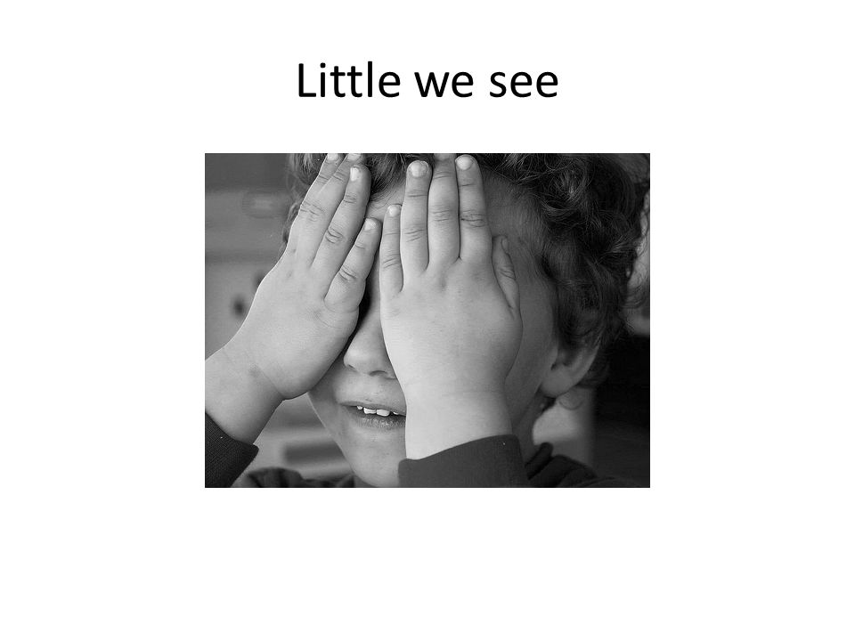 Little we see