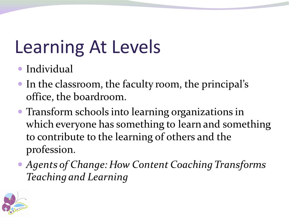 Learning At Levels Individual
