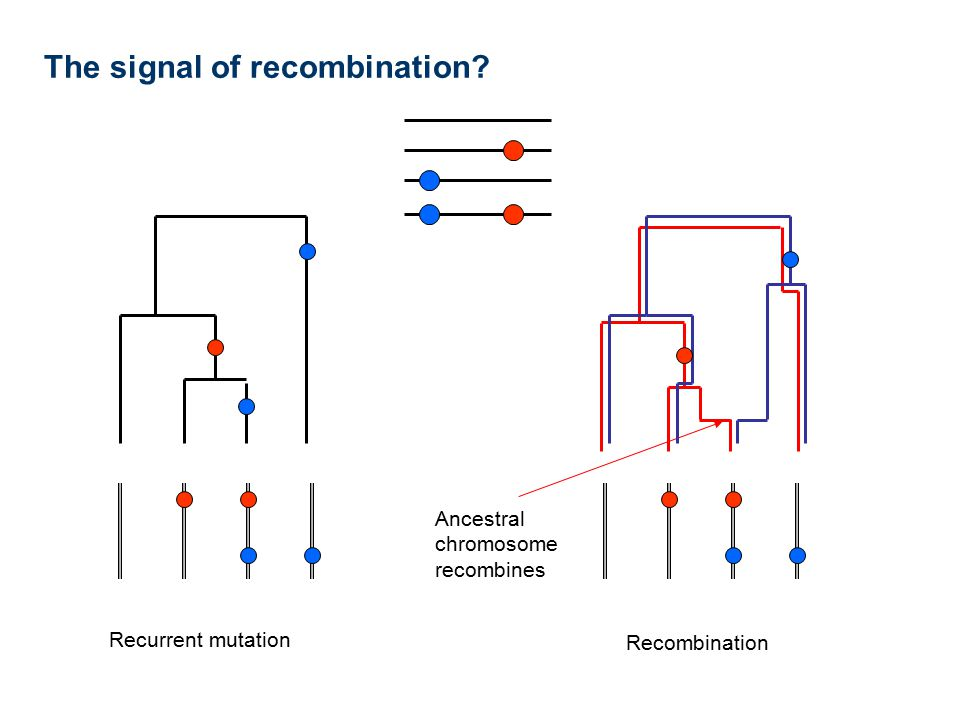 The signal of recombination