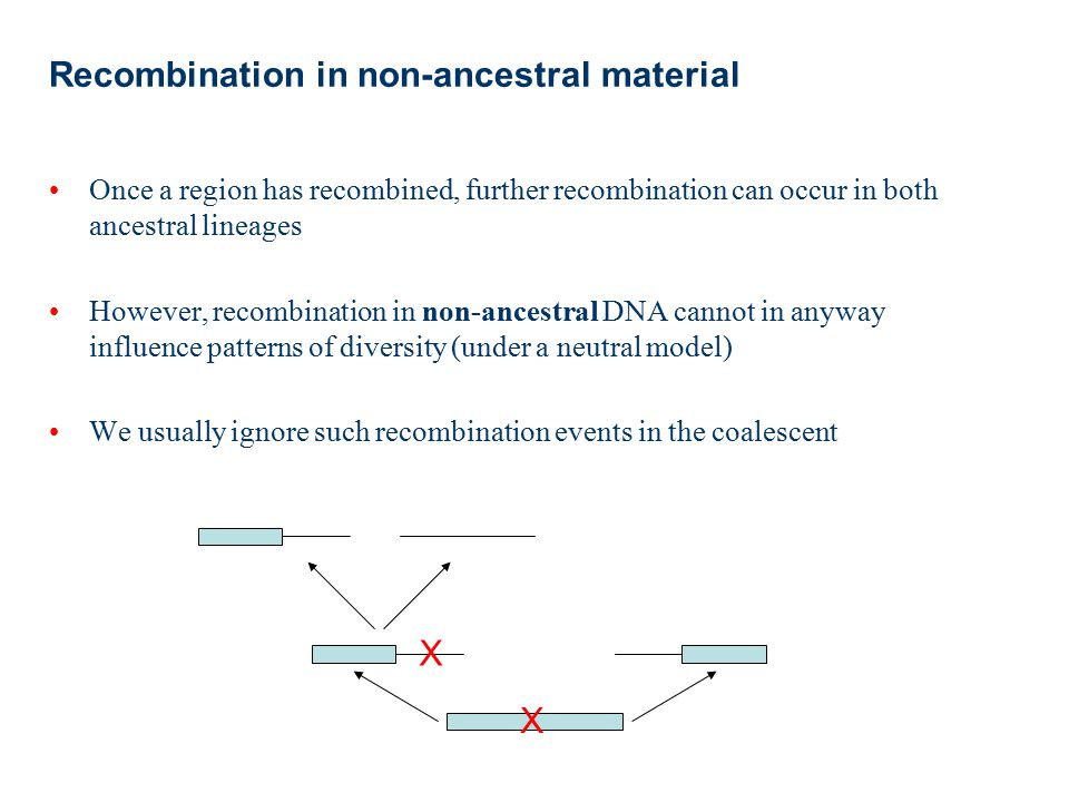 Recombination in non-ancestral material