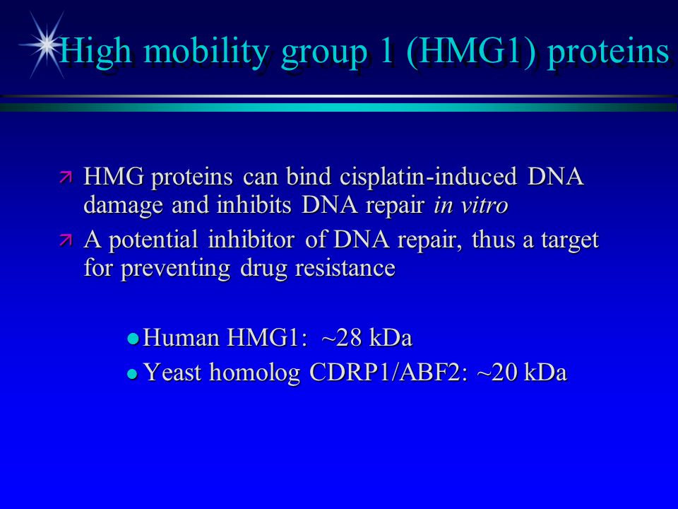 High mobility group 1 (HMG1) proteins