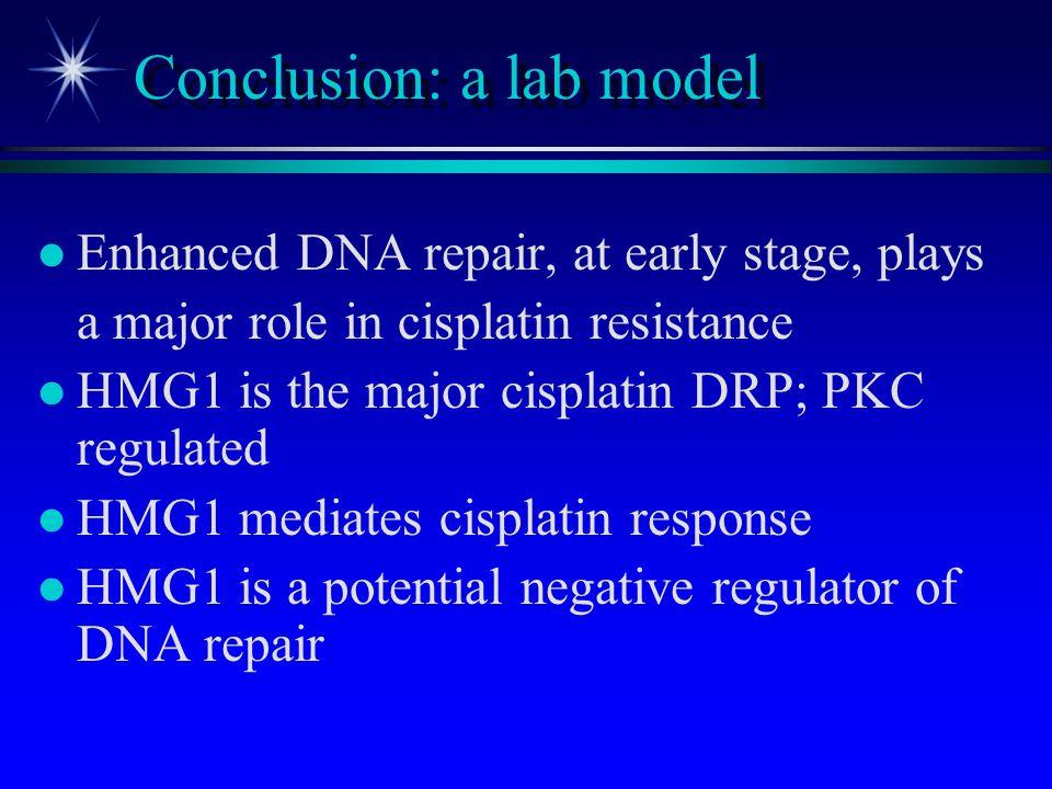 Conclusion: a lab model
