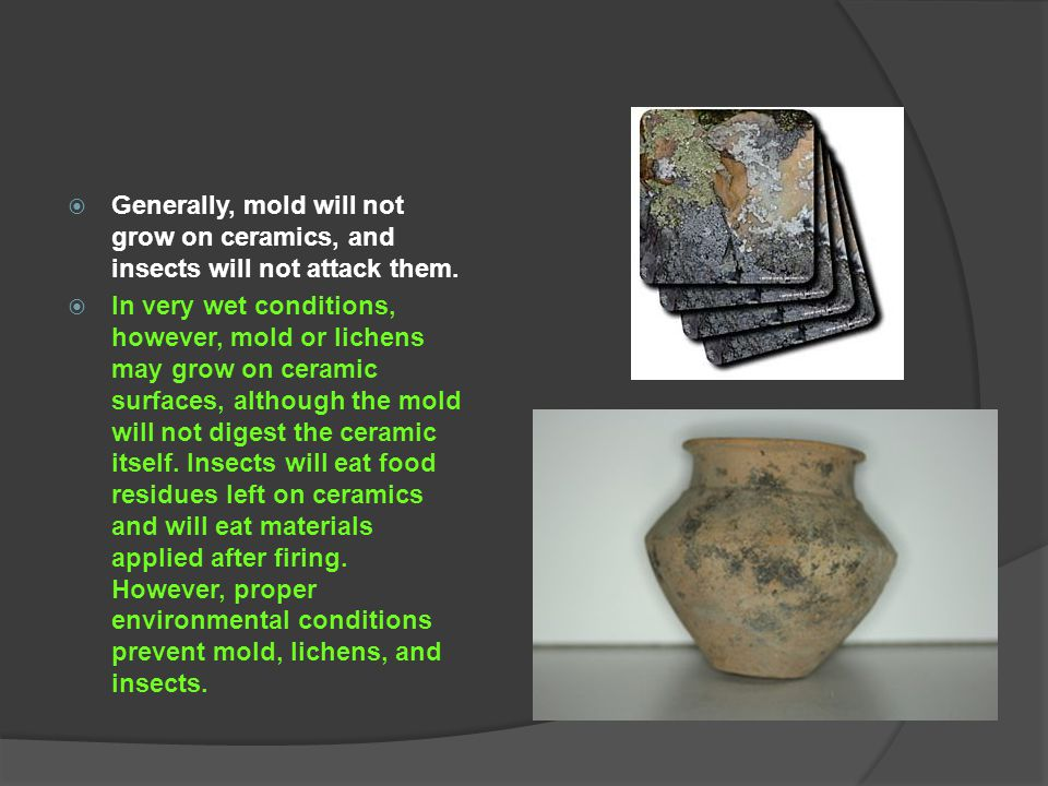 Generally, mold will not grow on ceramics, and insects will not attack them.