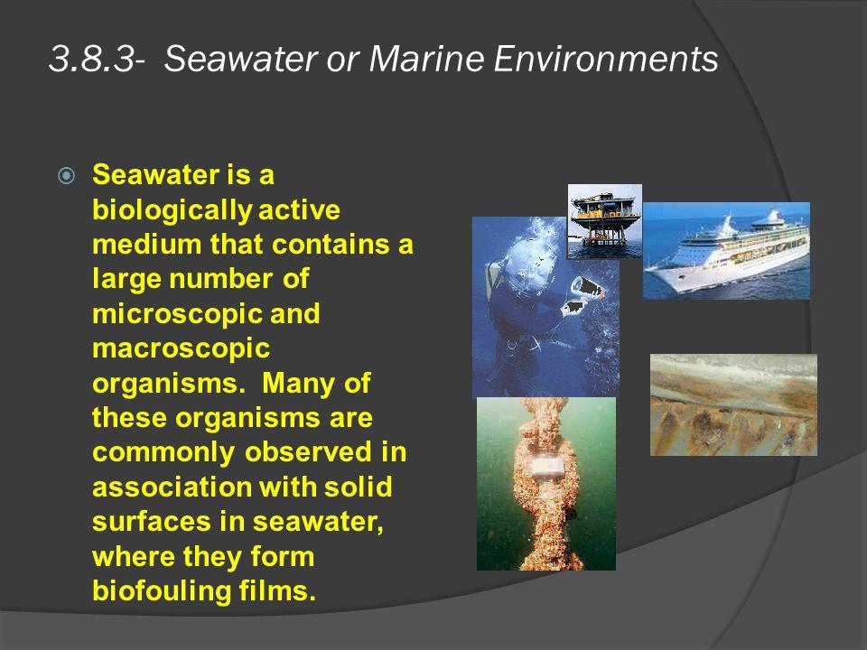 3.8.3- Seawater or Marine Environments