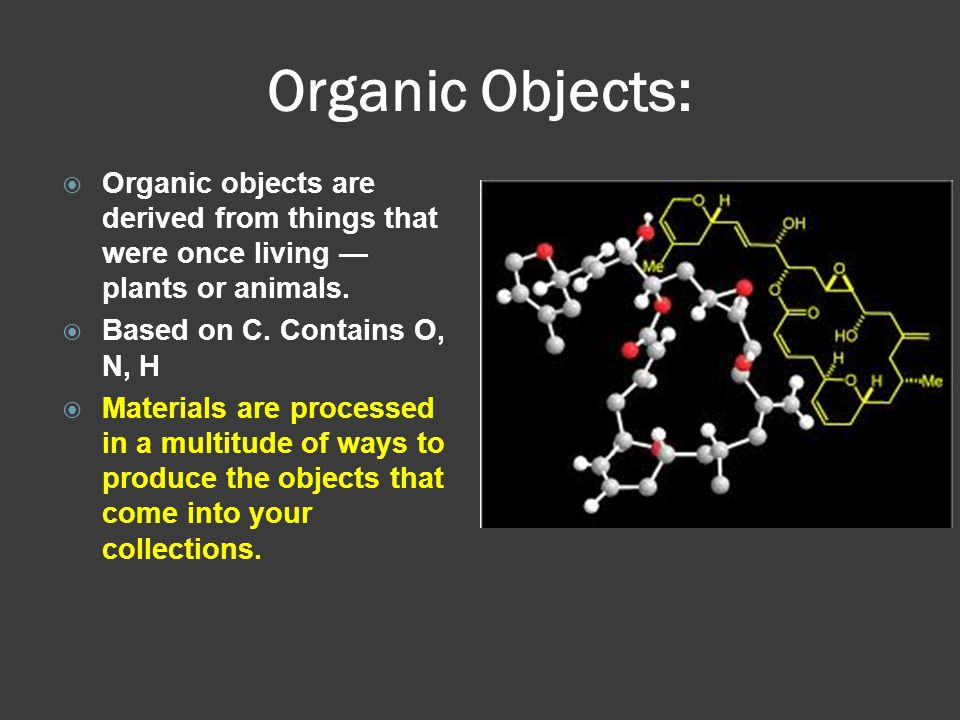 Organic Objects: Organic objects are derived from things that were once living — plants or animals.