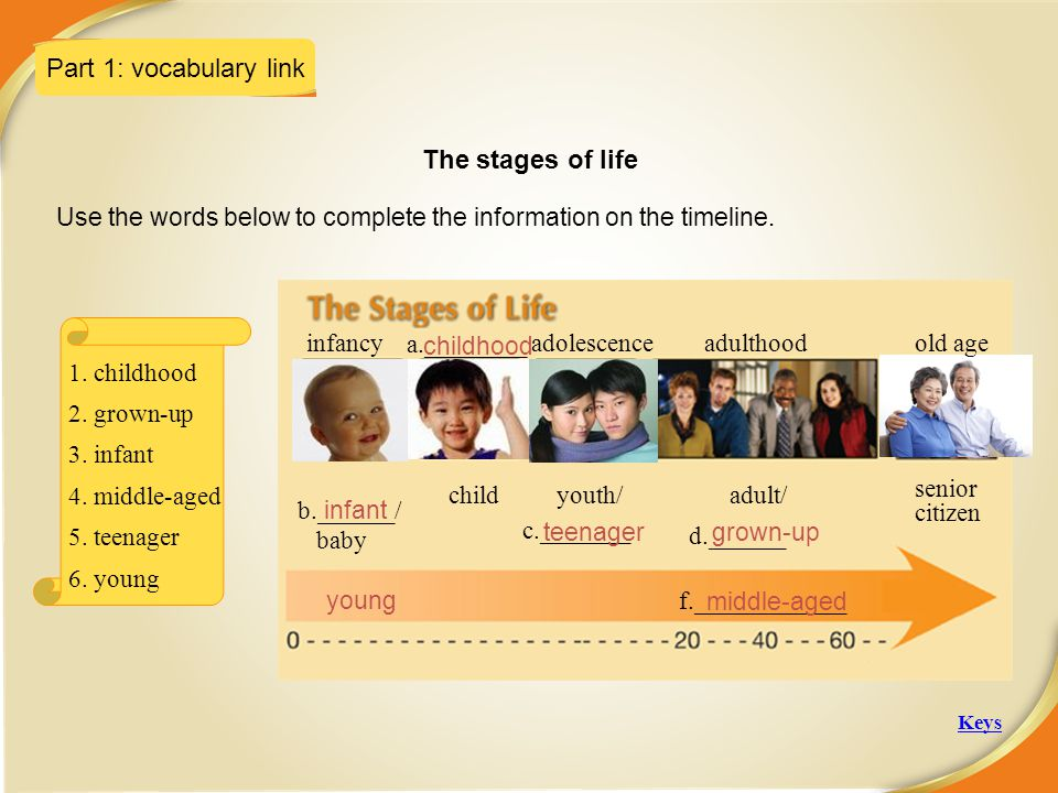 Part 1: vocabulary link The stages of life