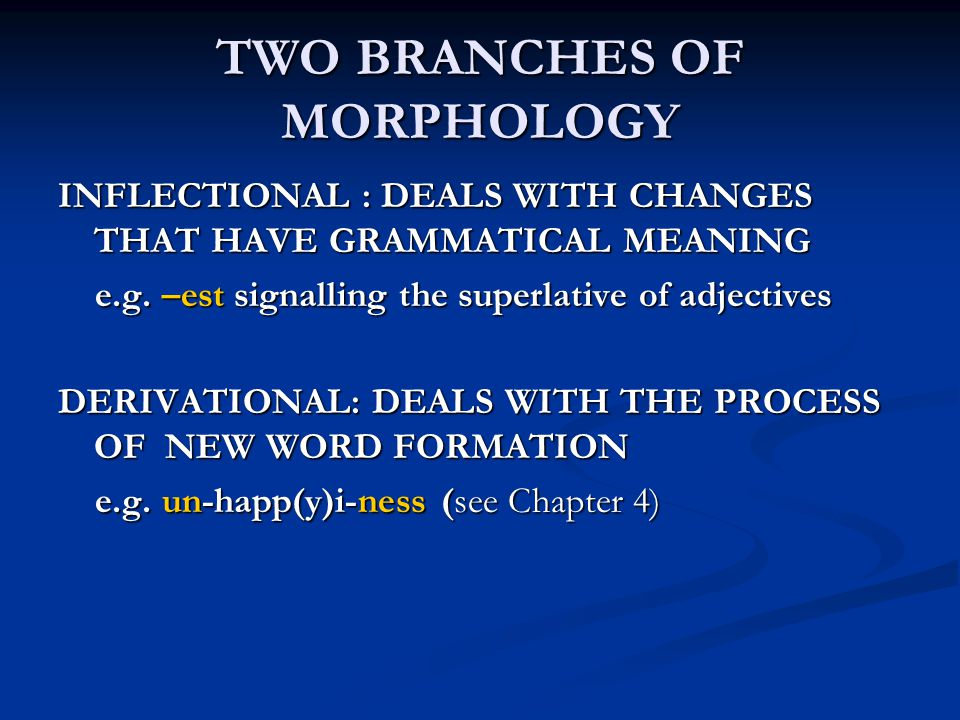 TWO BRANCHES OF MORPHOLOGY