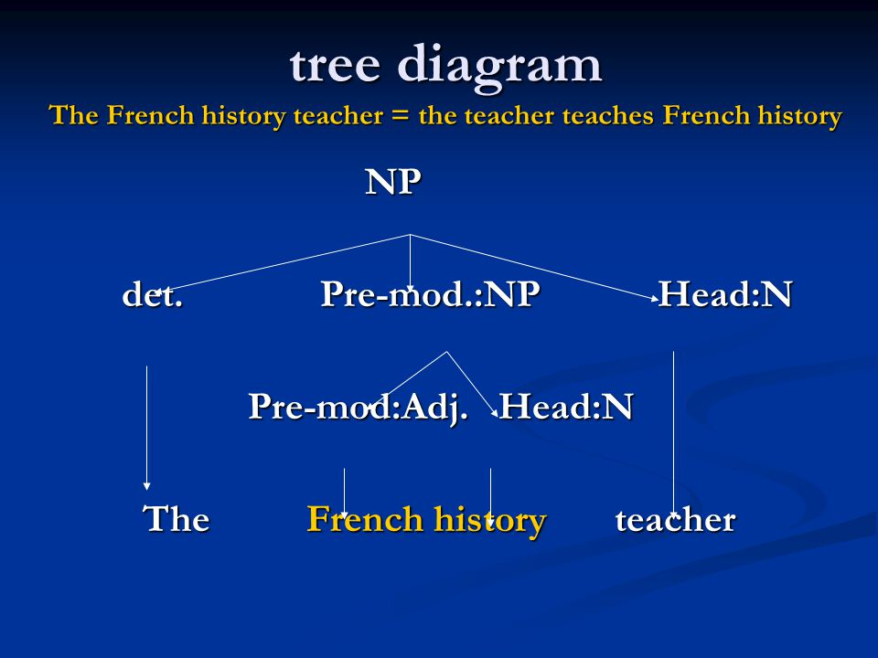 The French history teacher