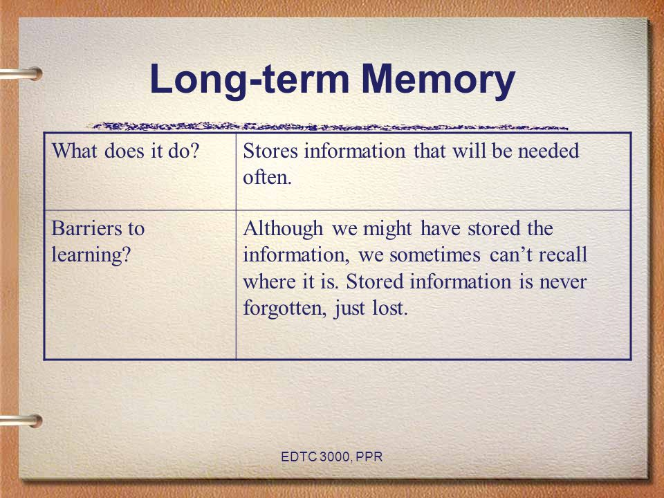 Long-term Memory What does it do