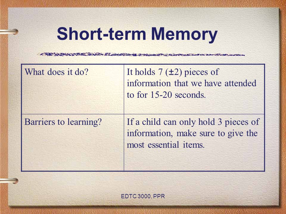 Short-term Memory What does it do