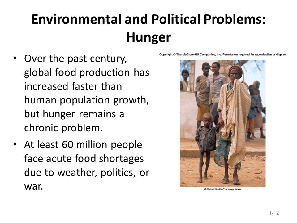 Environmental and Political Problems: Hunger
