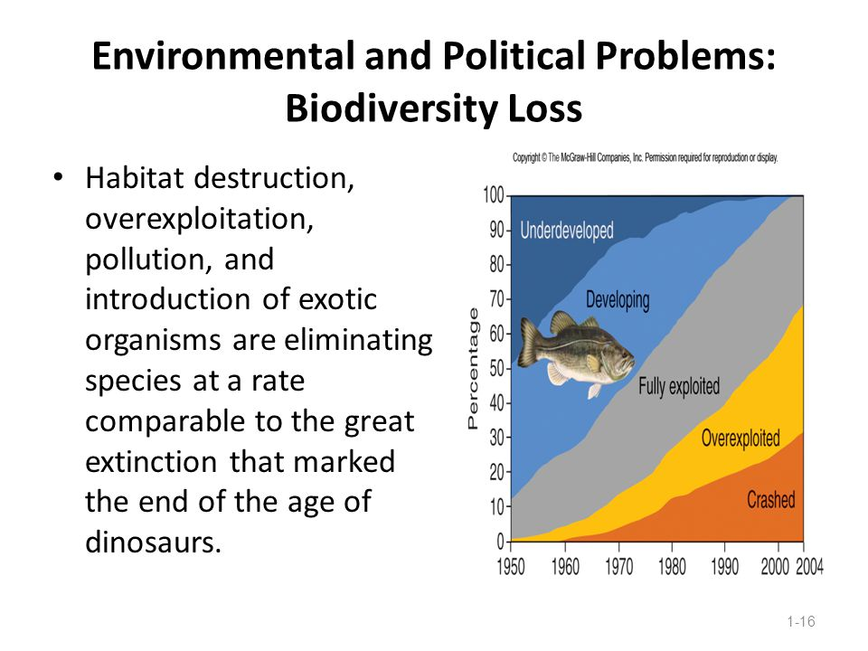 Environmental and Political Problems: Biodiversity Loss