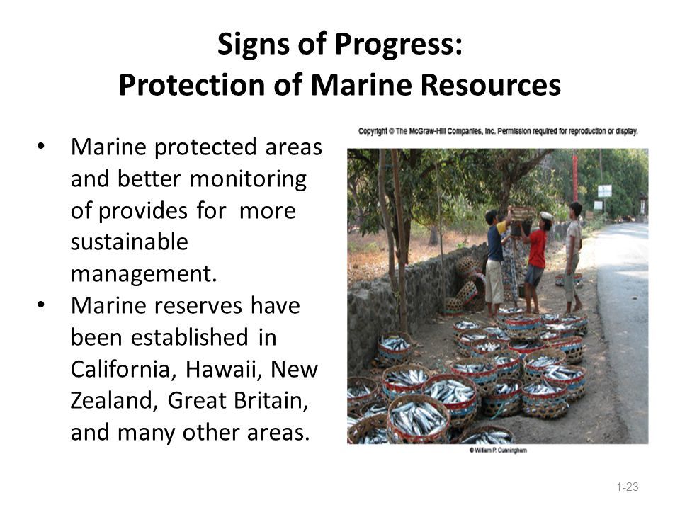 Signs of Progress: Protection of Marine Resources
