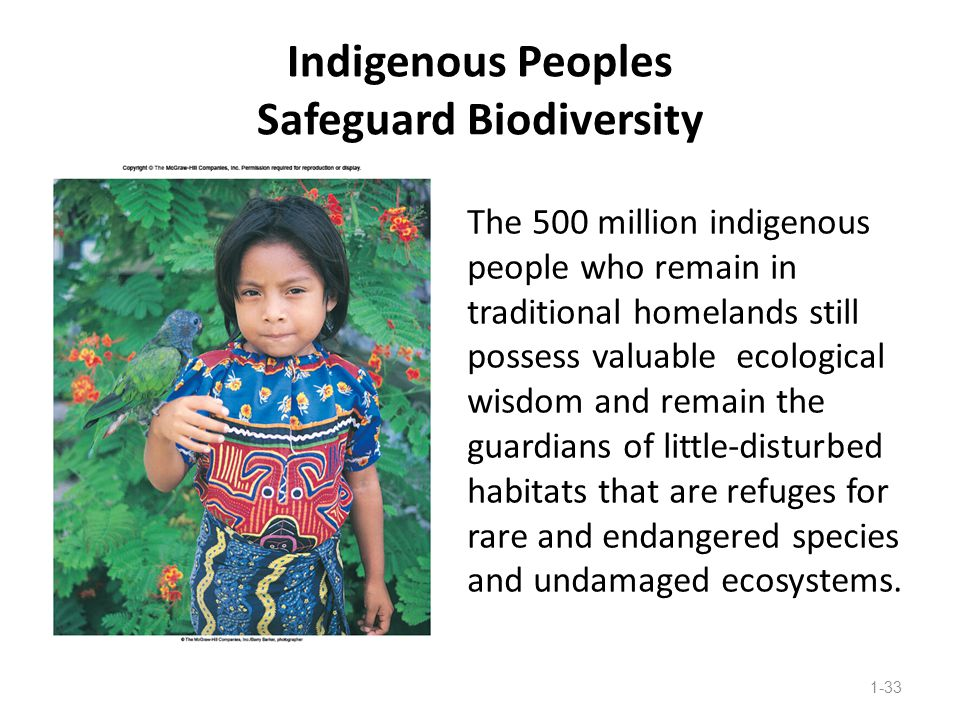 Indigenous Peoples Safeguard Biodiversity