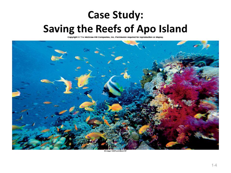 Case Study: Saving the Reefs of Apo Island