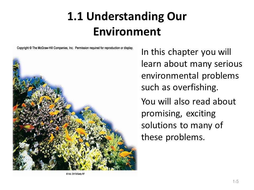 1.1 Understanding Our Environment