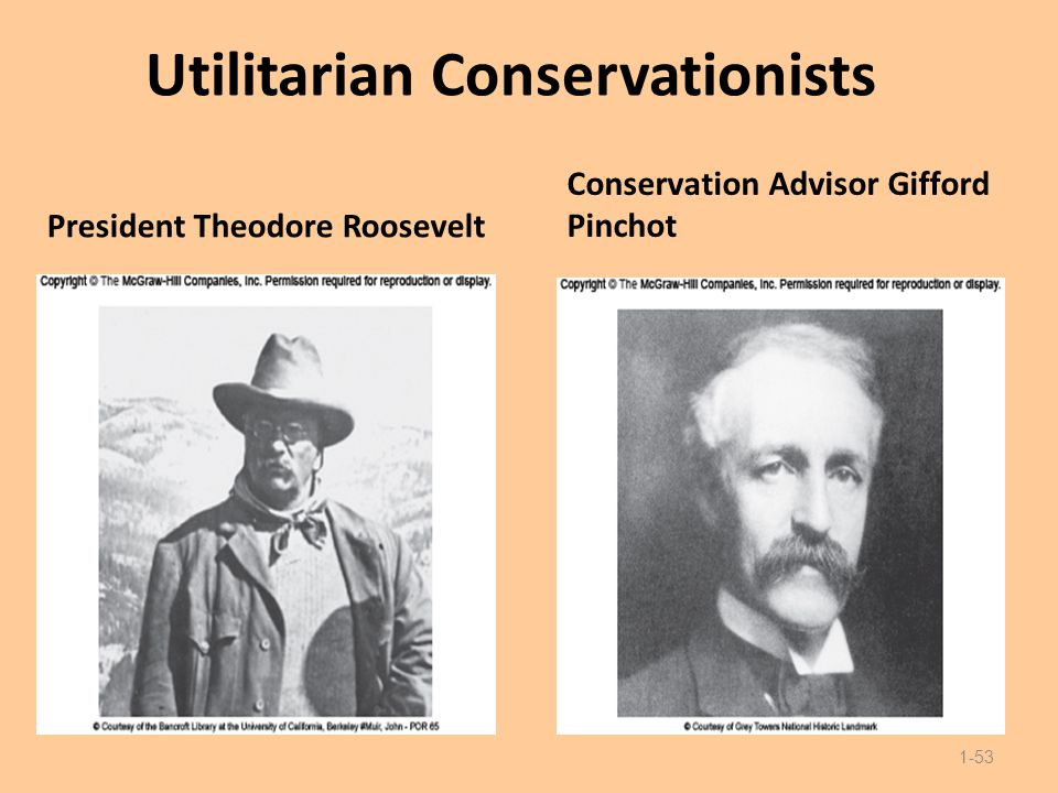 Utilitarian Conservationists