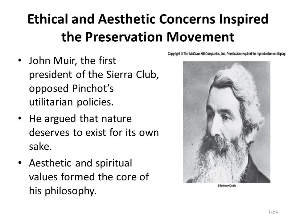 Ethical and Aesthetic Concerns Inspired the Preservation Movement