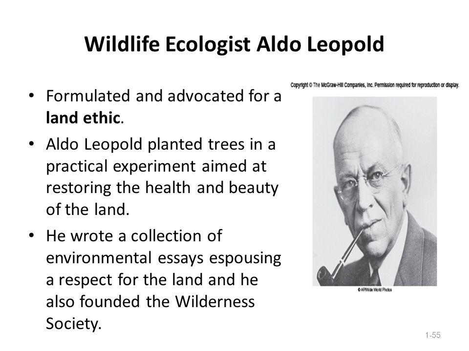 Wildlife Ecologist Aldo Leopold