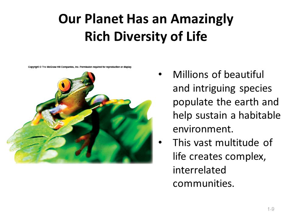Our Planet Has an Amazingly Rich Diversity of Life