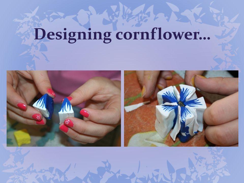 Designing cornflower…