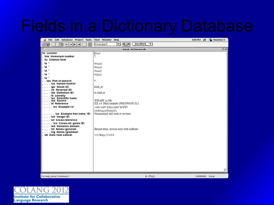 Fields in a Dictionary Database