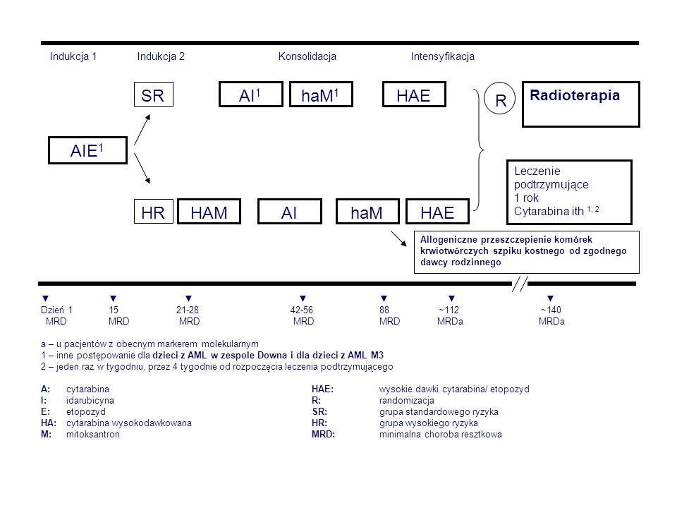 AIE1 SR HR HAM AI haM HAE AI1 haM1 R Radioterapia