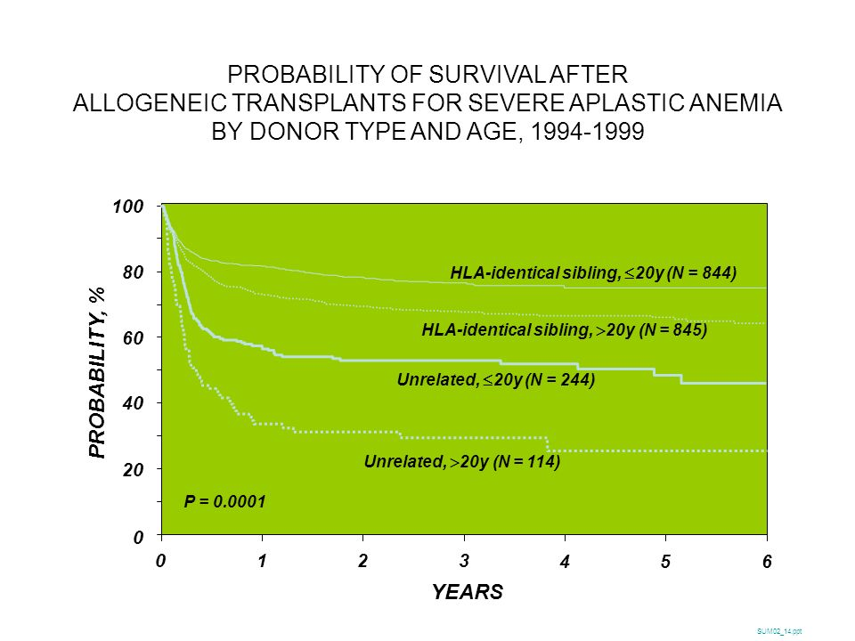 PROBABILITY OF SURVIVAL AFTER ALLOGENEIC TRANSPLANTS FOR SEVERE APLASTIC ANEMIA BY DONOR TYPE AND AGE, 1994-1999