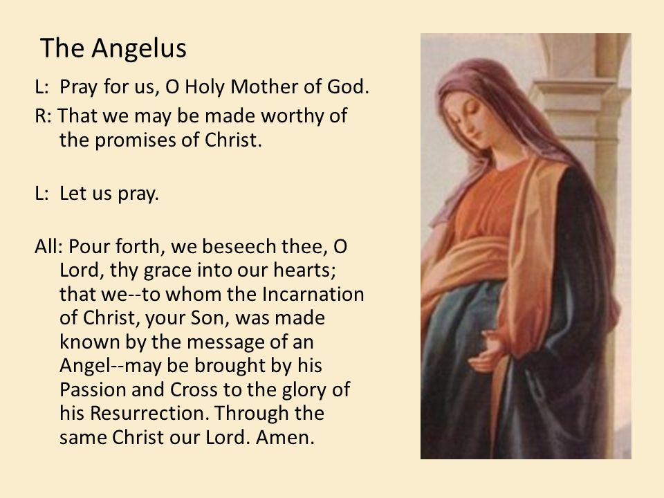 The Angelus L: Pray for us, O Holy Mother of God.