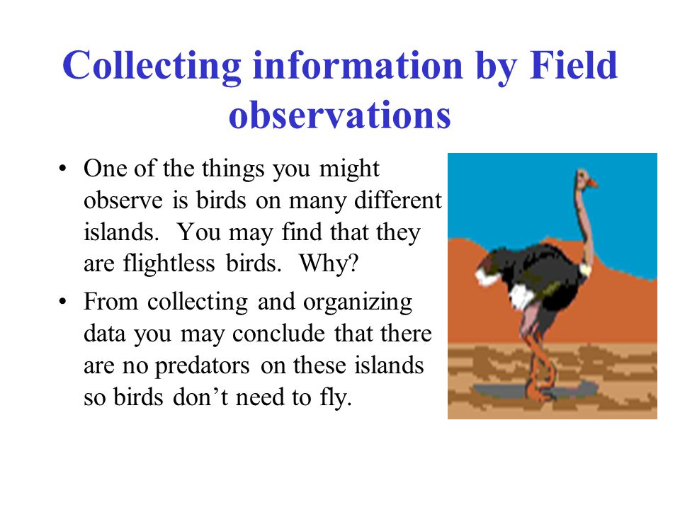 Collecting information by Field observations