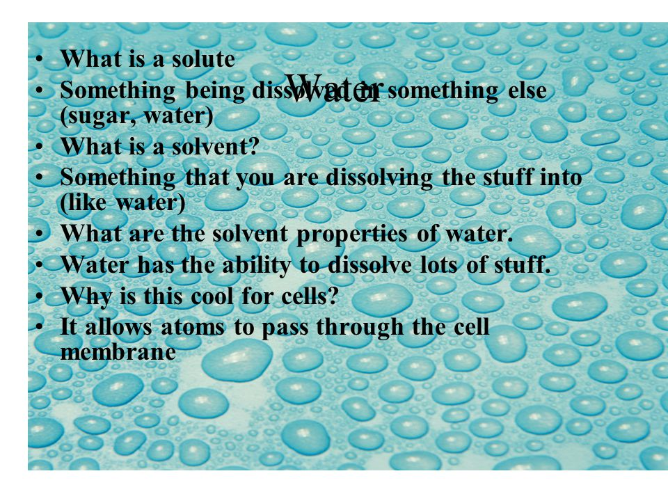 What is a solute Something being dissolved in something else (sugar, water) What is a solvent