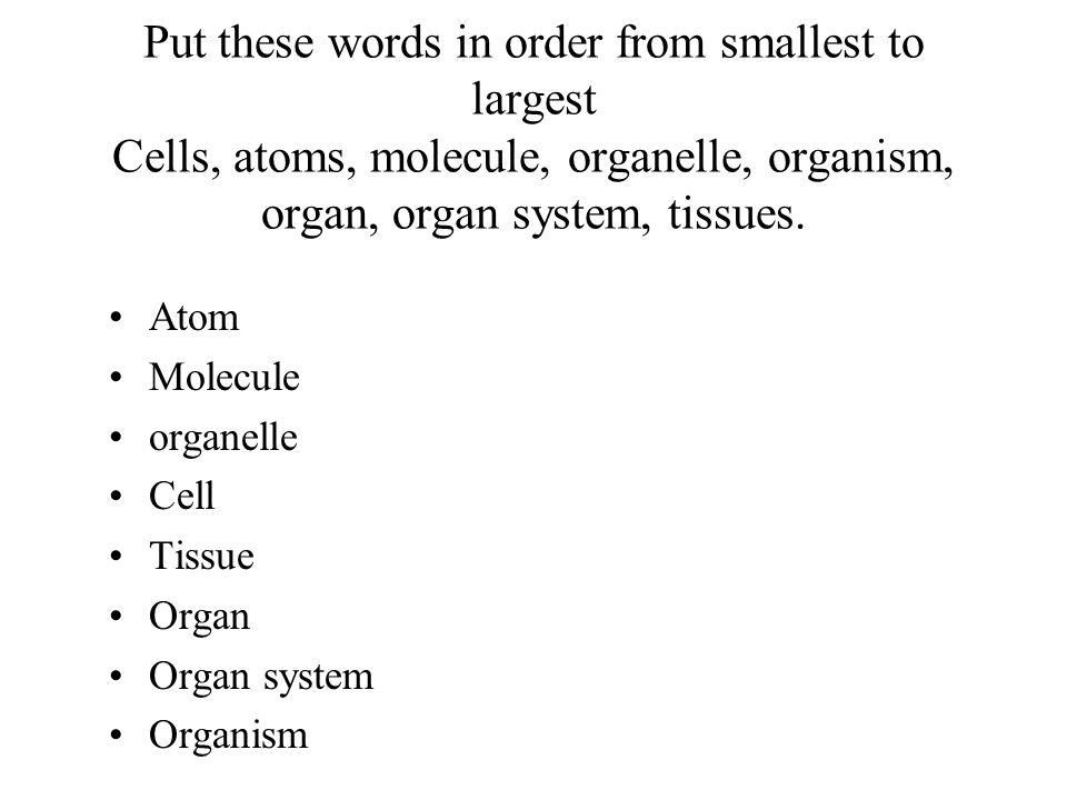 Put these words in order from smallest to largest Cells, atoms, molecule, organelle, organism, organ, organ system, tissues.