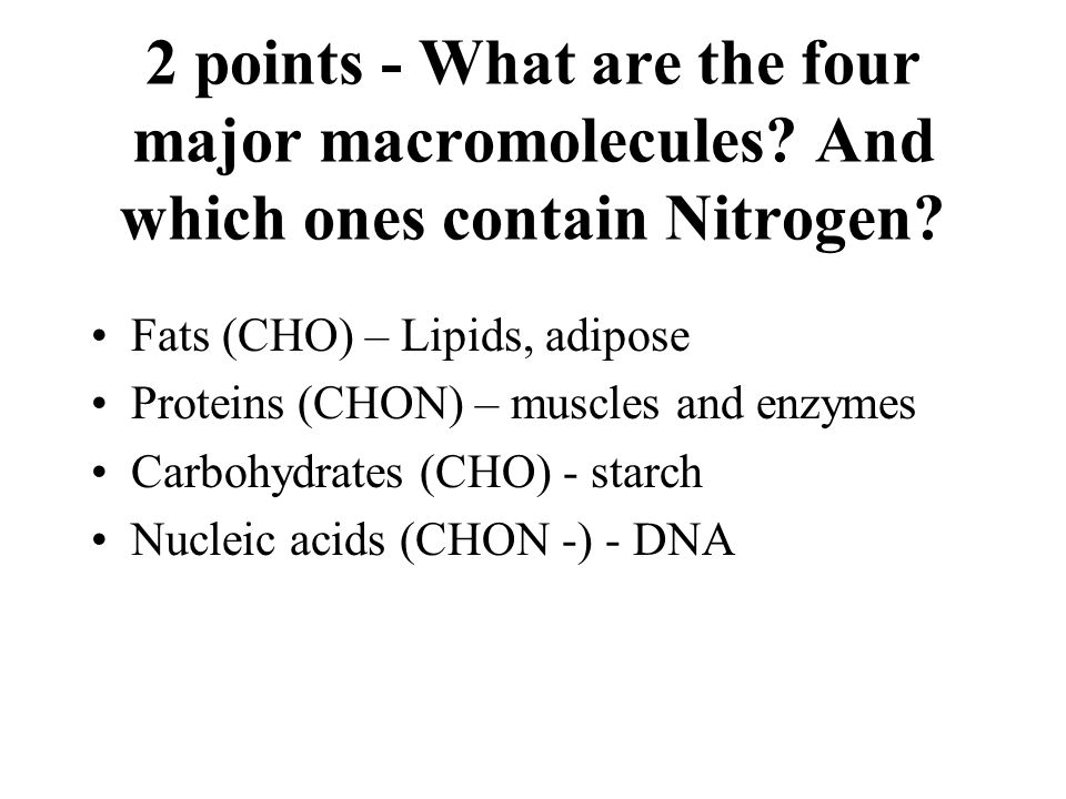 2 points - What are the four major macromolecules