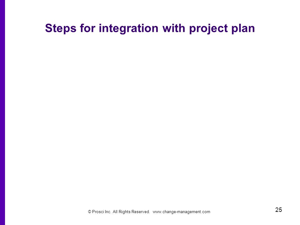 Steps for integration with project plan