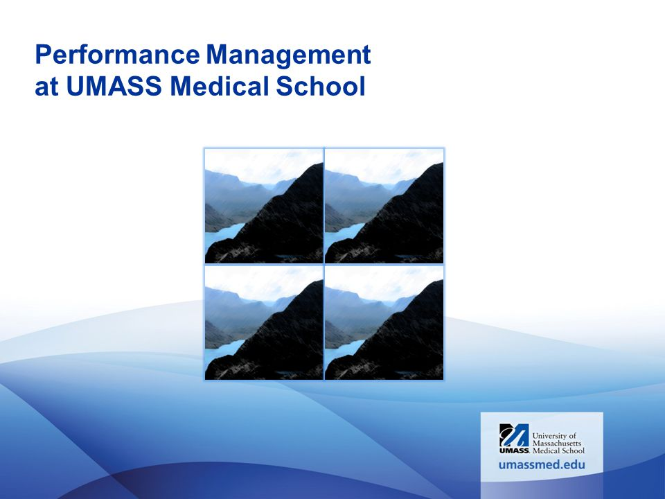 Performance Management at UMASS Medical School