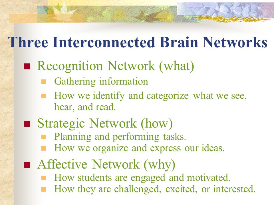 Three Interconnected Brain Networks