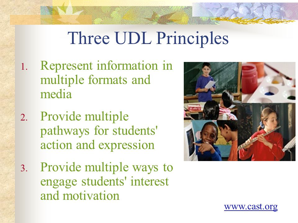 KAGE Conference Feb 22, 2008. Three UDL Principles. Represent information in multiple formats and media.