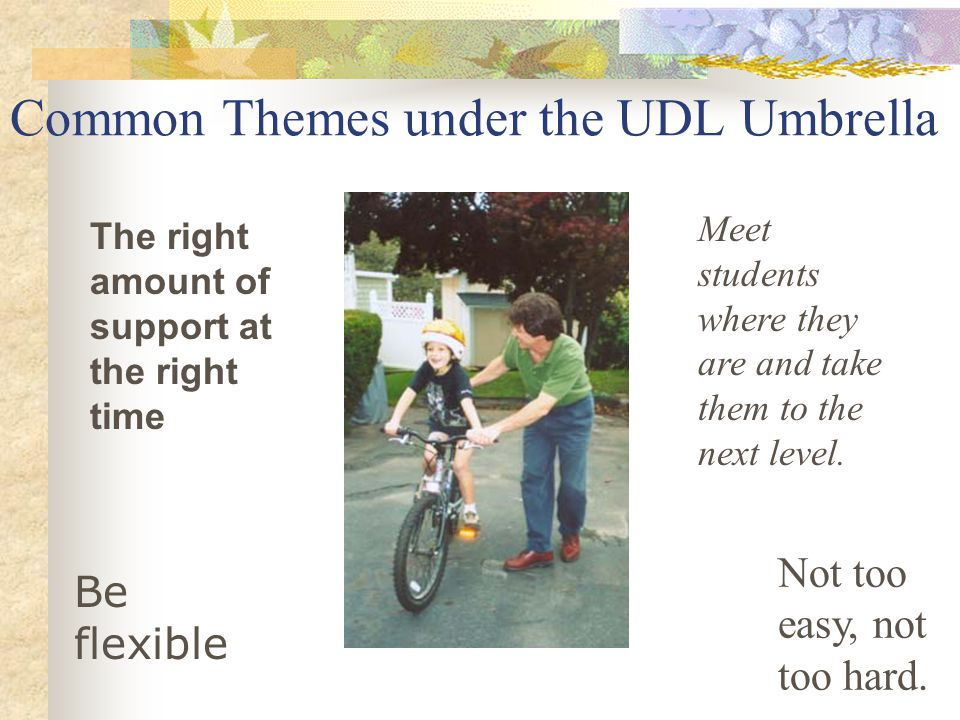 Common Themes under the UDL Umbrella