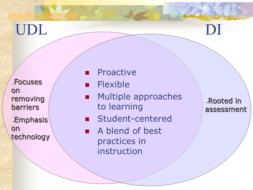 UDL DI Proactive Flexible Multiple approaches to learning