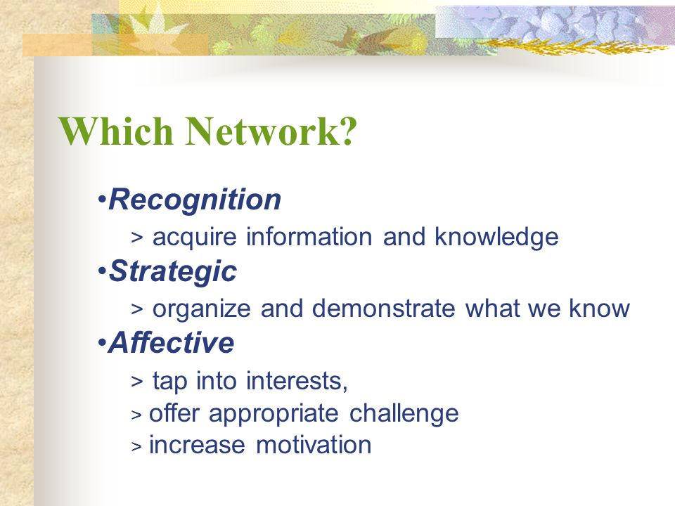 Which Network Recognition acquire information and knowledge Strategic