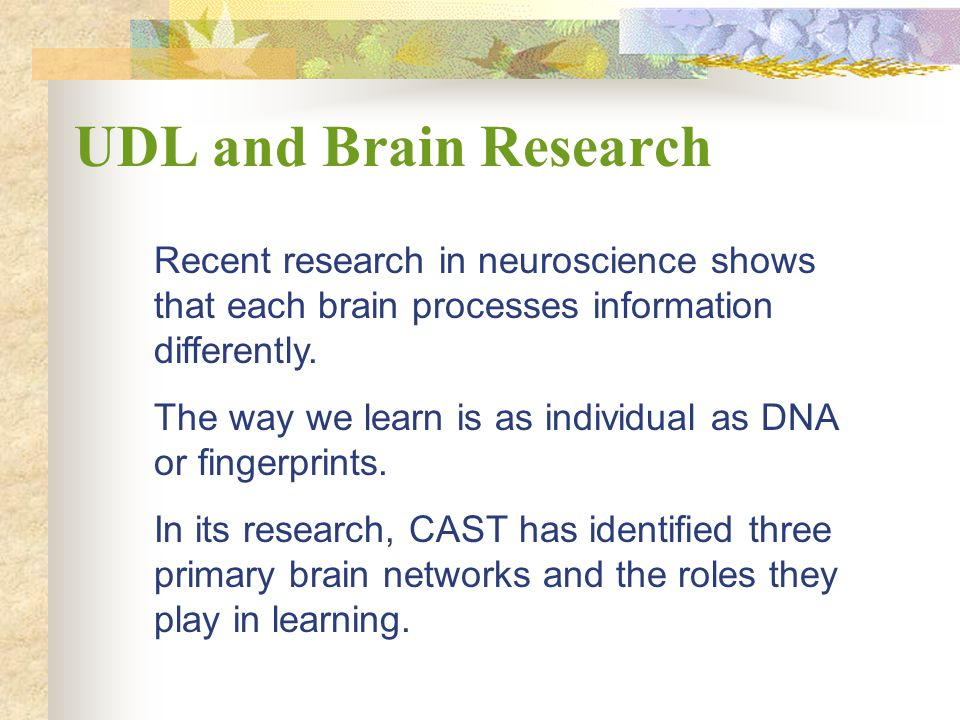 KAGE Conference Feb 22, 2008. UDL and Brain Research. Recent research in neuroscience shows that each brain processes information differently.