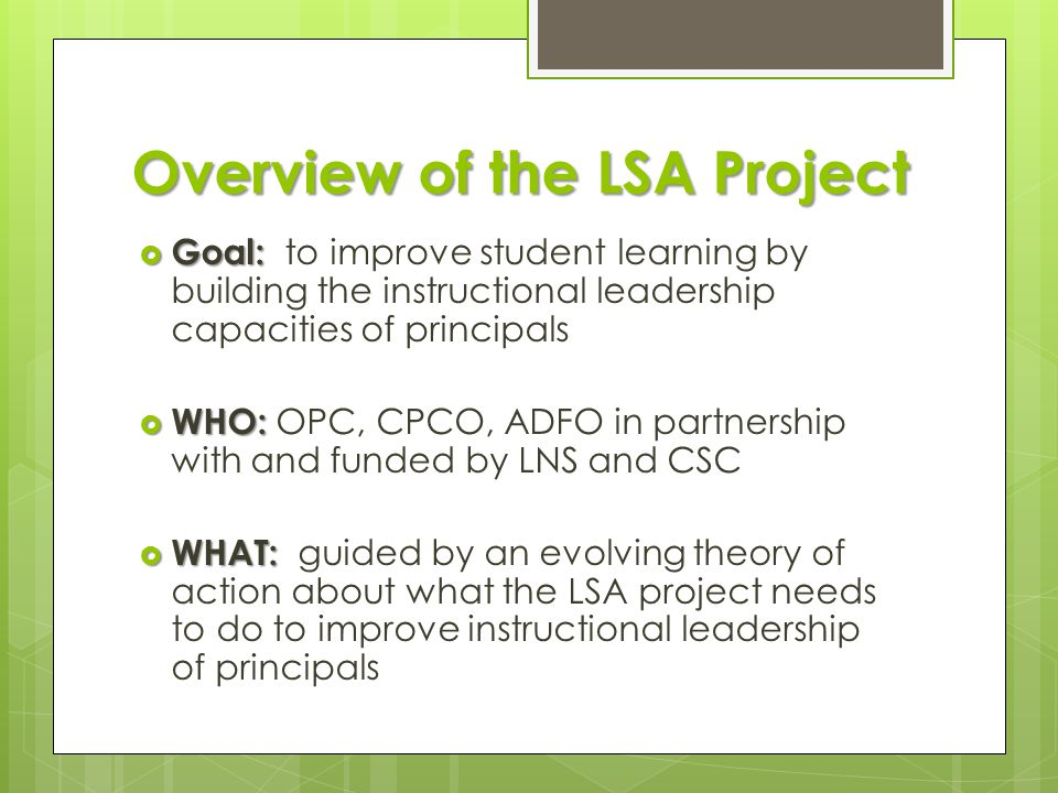 Overview of the LSA Project