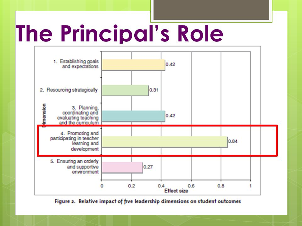 The Principal's Role