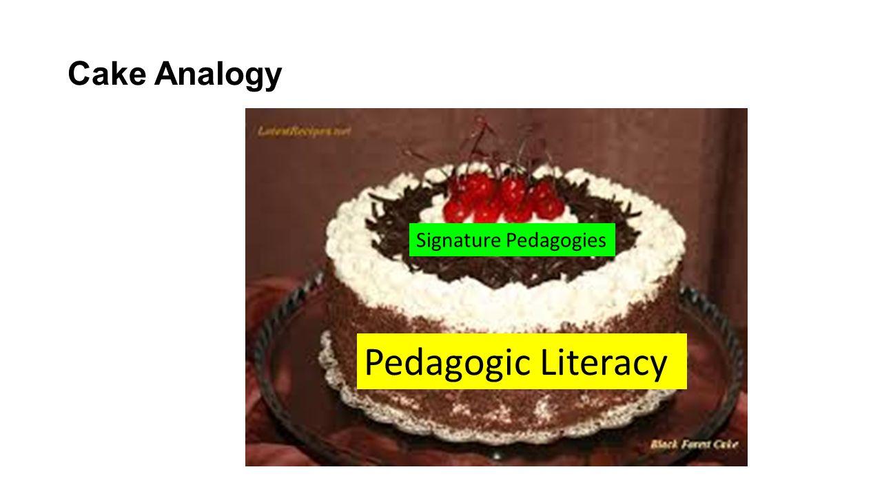 Cake Analogy Signature Pedagogies Pedagogic Literacy